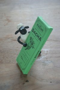 Shaun the sheep met Kallari gember