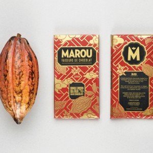 chocolade en cacaoboon mooi rood ba ria uit vietnam