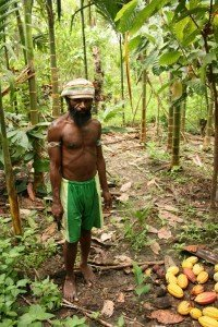 original beans cacao farmer in Papua