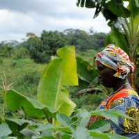 female cacao farmer in between trees femmes de virunga congo
