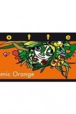 zotter balsamico sinaasappel