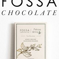 fossa chocolate logo bean to bar chocolade uit singapore hoge kwaliteit pure chocolade en prachtige smaken zoals thee en salted egg